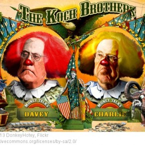 koch clown